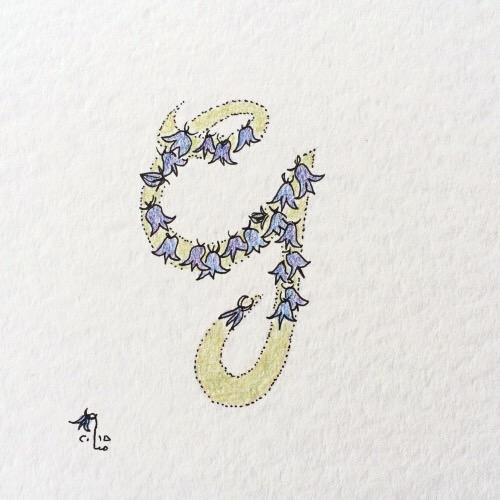Glockenblume.JPG