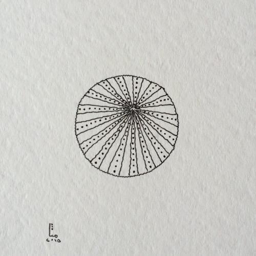 Tintenblume no. 6