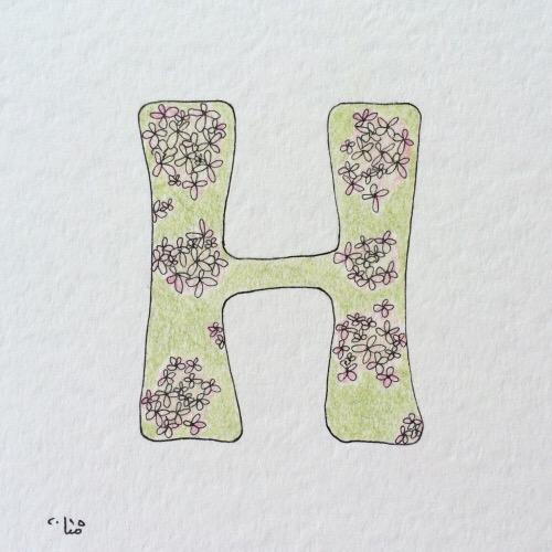 hortensie.JPG