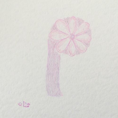 pastel-pink.JPG