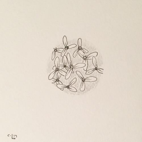 Tintenblume no. 25