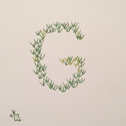 Grassoden.JPG